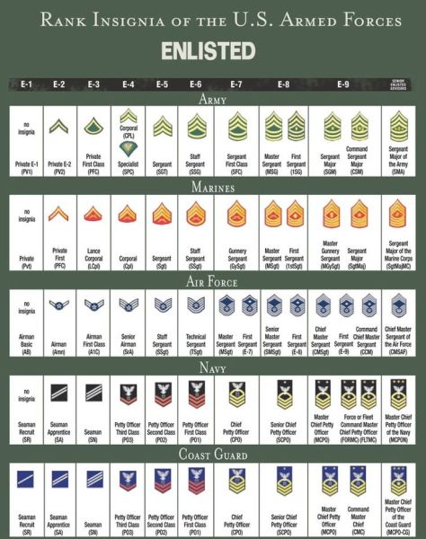 0a23e7b15d19c88709e0b320bf718d44--army-ranks-military-ranks.jpg
