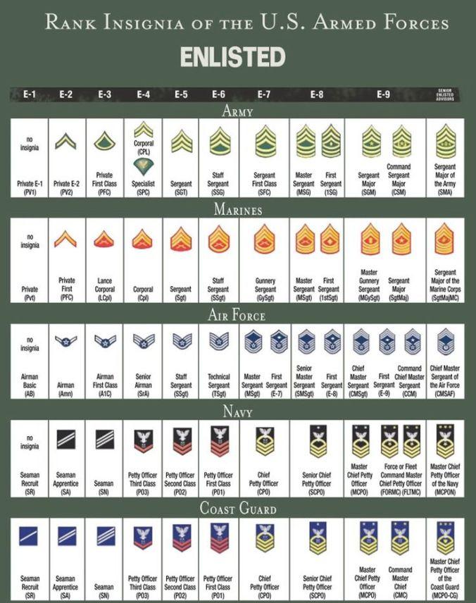 0a23e7b15d19c88709e0b320bf718d44--army-ranks-military-ranks.jpg